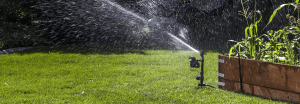 Best Motion Sensor Sprinklers